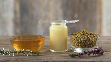 Cách dùng và sử dụng sữa ong chúa
